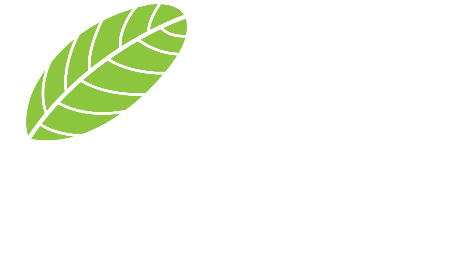 Phúc Ninh City khu đô thị kiểu mẫu